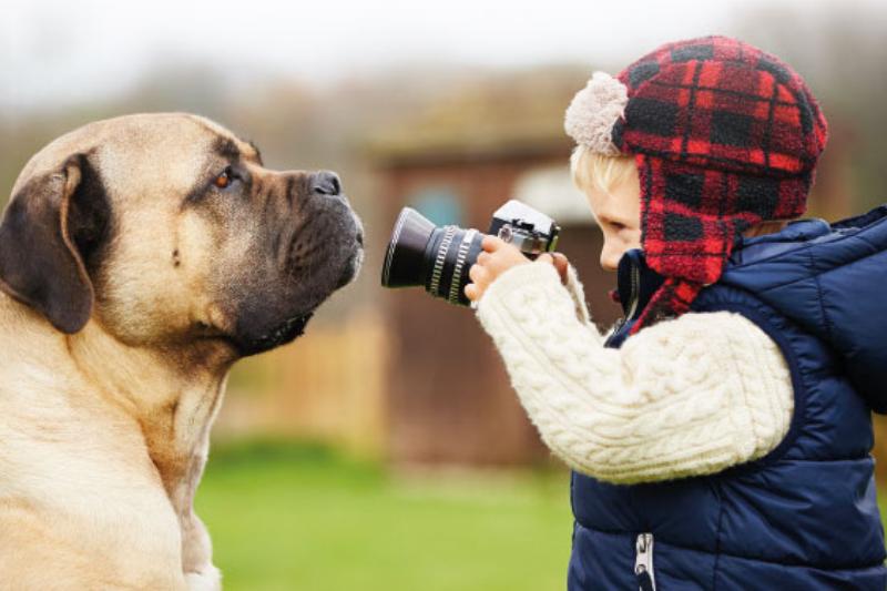 2018 el ao negro para el sector de la fotografa