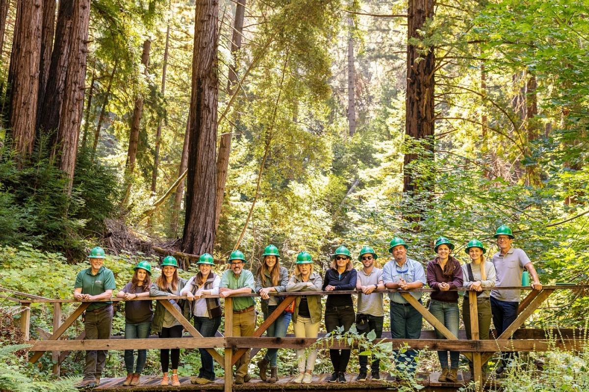 hp se asocia con wwf para el cuidado recuperacin y mantenimiento de los bosques