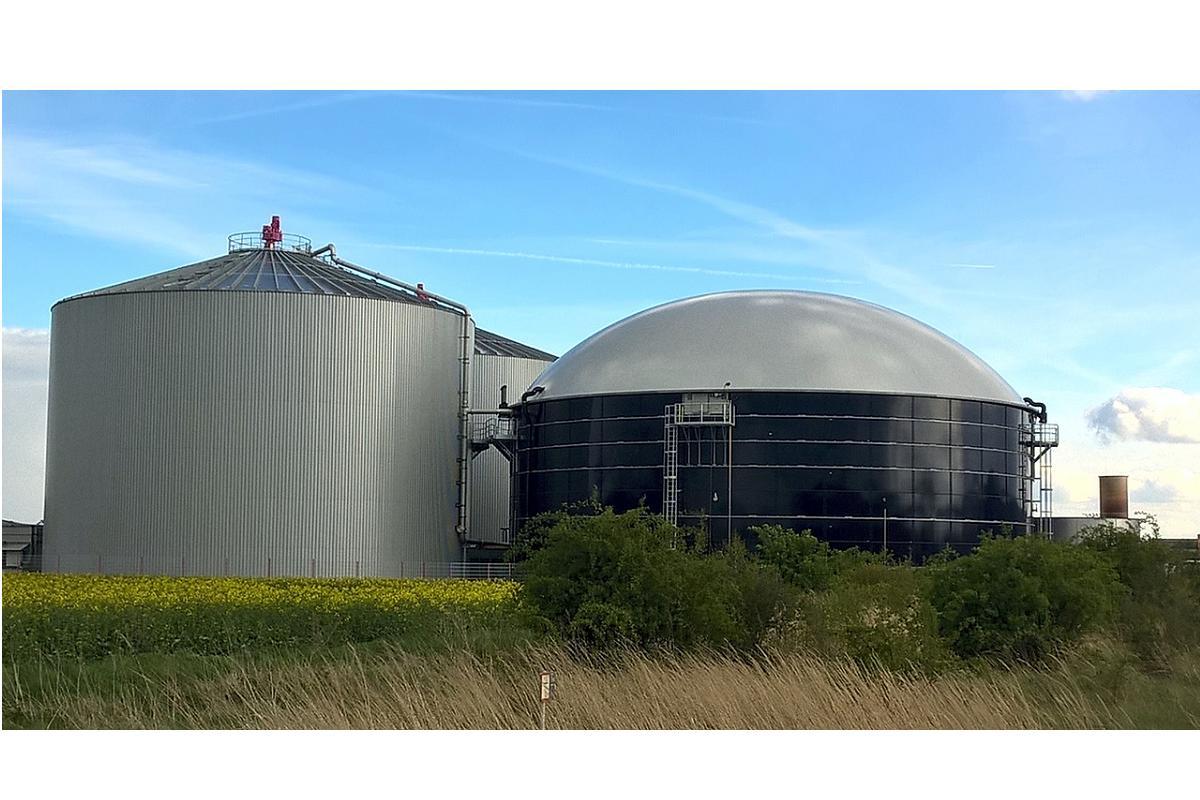 2019 el ao de la industria del gas natural licuado con rcord de inversin