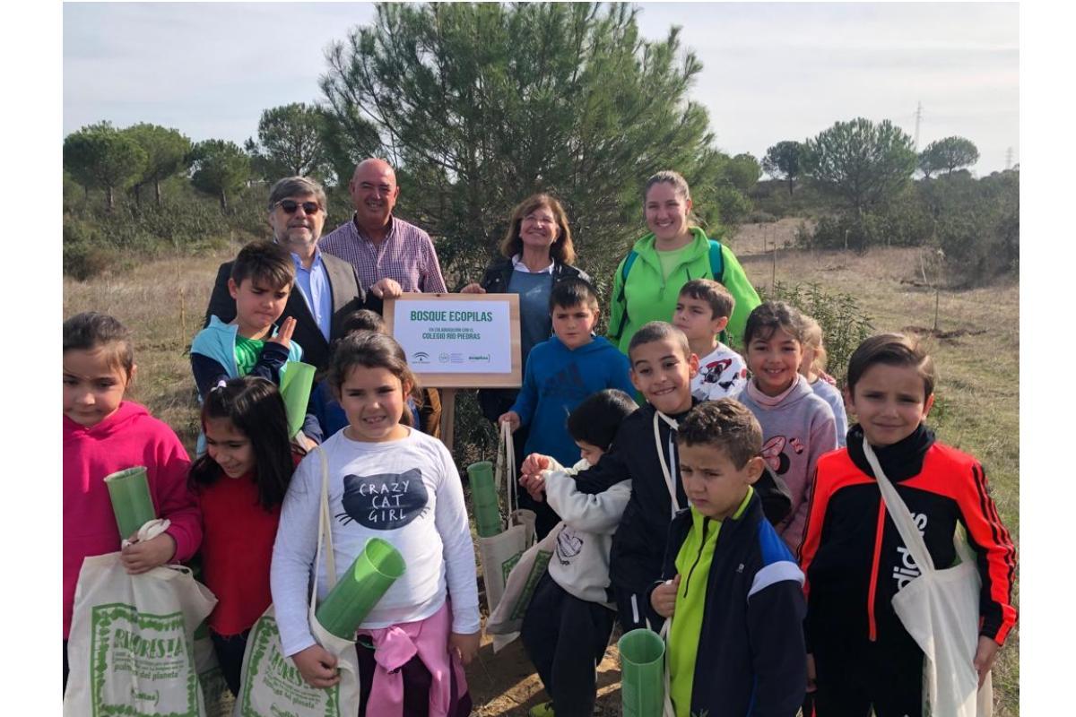 alumnos de lepe reforestan una zona de alto valor biolgico gracias a ecopilas