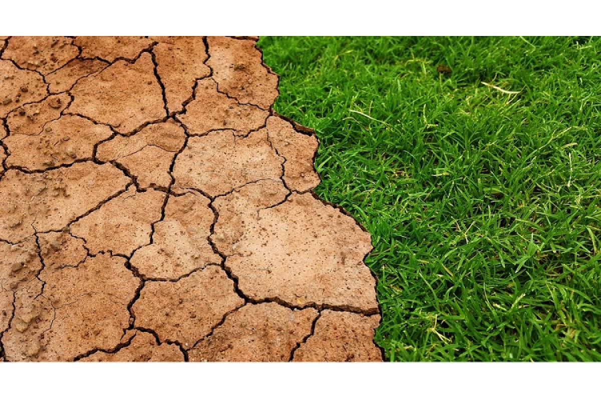 lenovo se propone reducir en un 50 las emisiones directas de alcance 1 y 2 para 2030