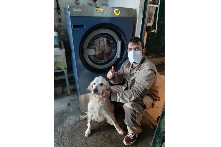 miele dona lavadoras a la protectora de animales de lugo