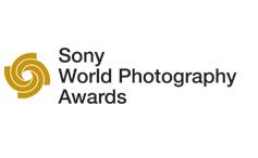 ganadores de las categoras abierta y joven de los sony world photography awards 2012