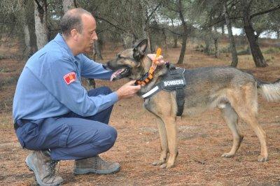 las unidades caninas de rescate apuestan por el sistema de rastreo de perros de garmin